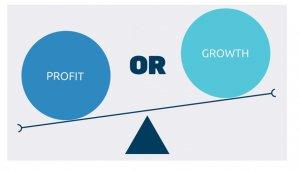mmugisa_profit-vs-Growth